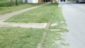 grass clippings in streets