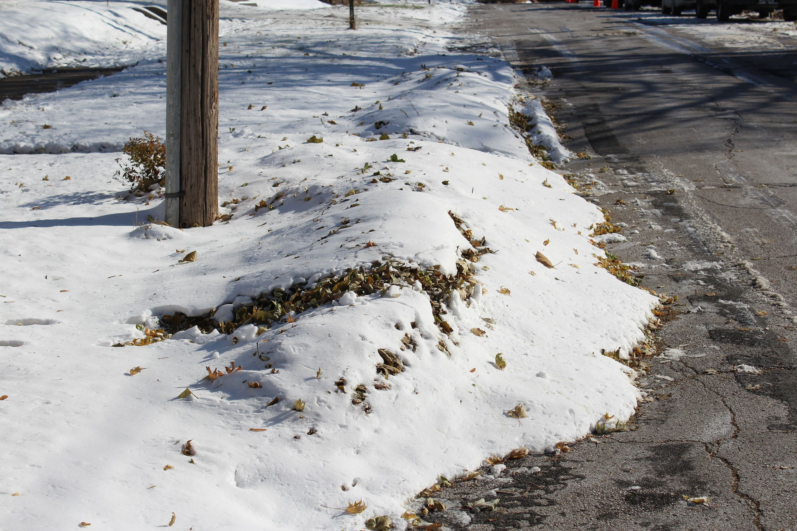 Snow covered leaf piles 111219 (JPG)